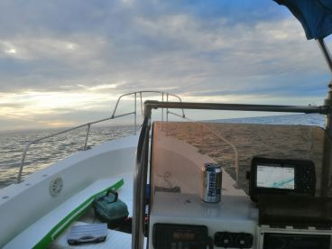 Baja California Sur Report Photo 1