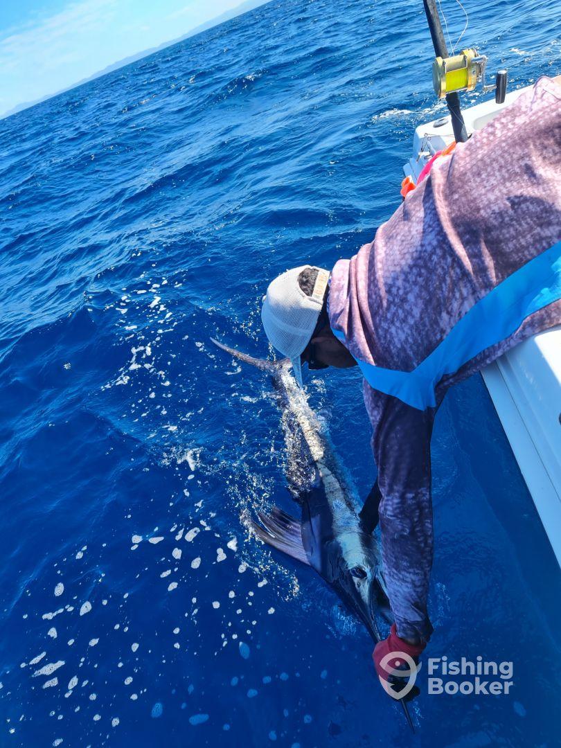 Costa Rica Report Photo 0