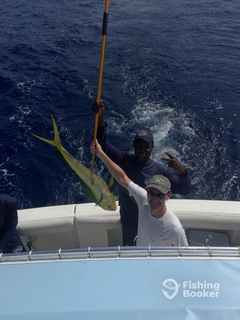 Dorado madness at puntacana marlin fever punta cana for Fishing in punta cana