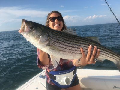 Fishing reports by four c s montauk sport fishing montauk for Montauk fishing report