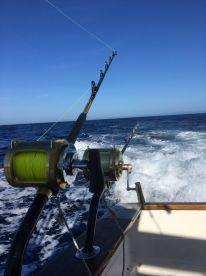 Full day mixed fishing with Gavito - Big Game Fishing
