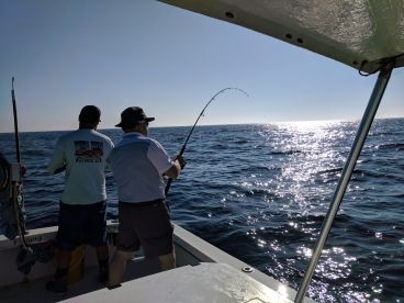 Full day charter with Pura Vida