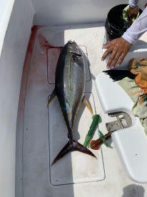 Full day of fun on the Blackfin