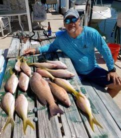 Great Morning Fishing