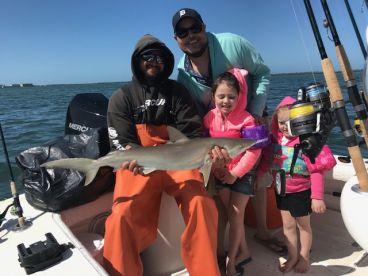 Shark trip inshore 3 hr trip