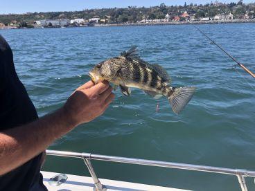 Fishing with Alan