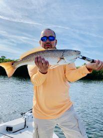 24inch Redfish