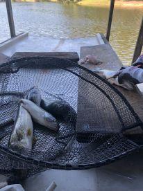 Bass Fishing with Jason