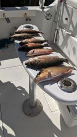 2 hour fishing