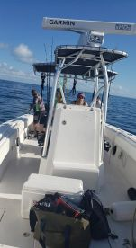 Fishing for yellowtail