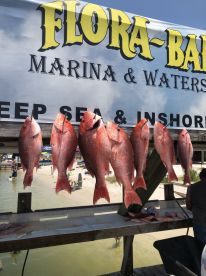 Great time catching snapper!