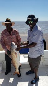 Red drum!!