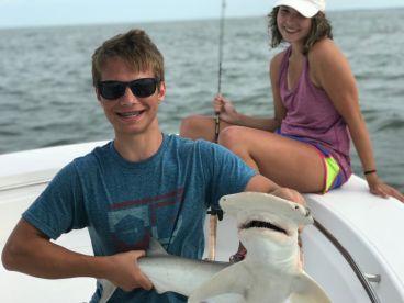 3 hour evening shark trip