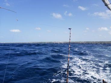Deep sea fun!