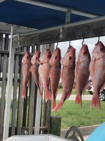 July fishing trip