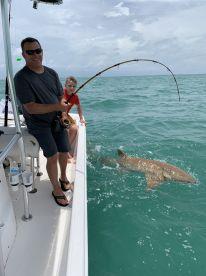 Fun time shark  fishing