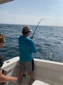 396 lbs of king fish