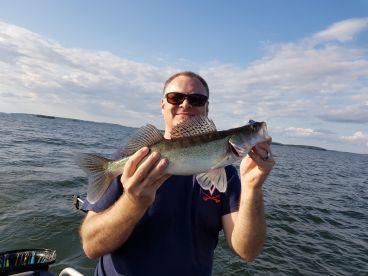 Zander fishing with Tomas
