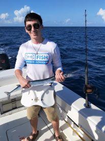 Atlantic Needlefish ( Rarely Caught )