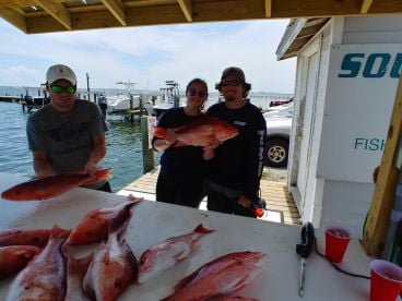 3\/4 Day trip Six Shooter Charters