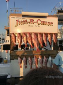 Evening trip with a limit of red snapper