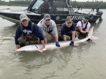 Good day Sturgeon fishing on the Fraser river