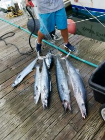 A fulfilling awesome August fishing charter.