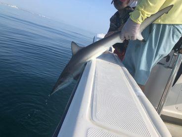 Fishing with Robert