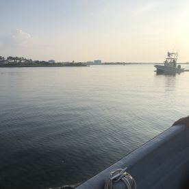 4 hr near shore with Capt T-Bow