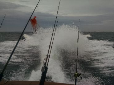 Boat has a lot of power to get you to the fish.