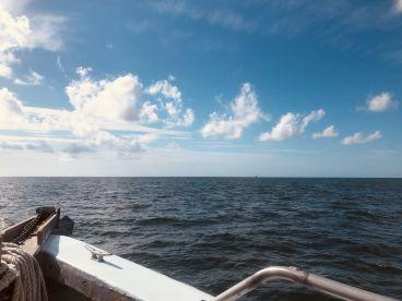 Reward fishing party boat Half day trip - AM