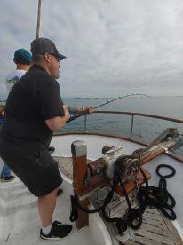 Pulling in a BIG shark!