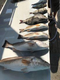 Full Day of Fishing