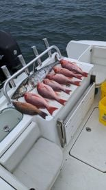 6 hour trip with Capt Gary