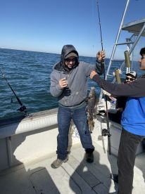 Awesome Morning Sea Bass Trip