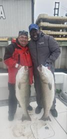 40 Lbs each..Stripers...OCT 2019