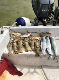 Our catch of the day!
