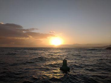 Great first deep sea fishing trip