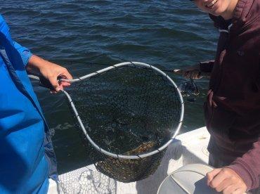 Half day of inshore fishing with Captain Joe Nash