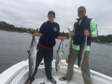 Big slew of King Mackerel!