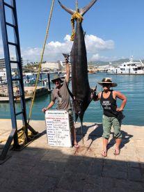 220 Pound Marlin!