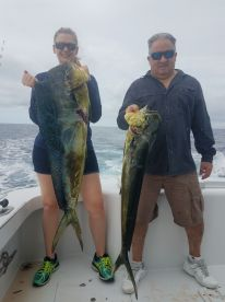 Great day,  Mahi, yellow fin and sail.