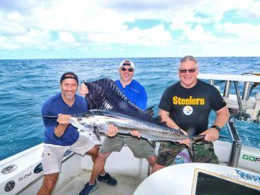 Half day trip with Mark the shark