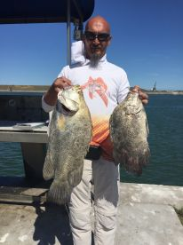 Half-day Trip for Tripletail
