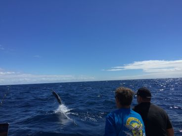 Marlin fishing for brother\u2019s 40th