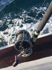 misrigged rod and reel