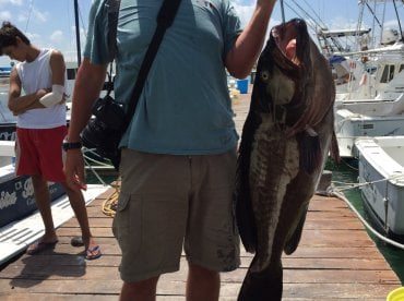 The Grouper, 60lbs