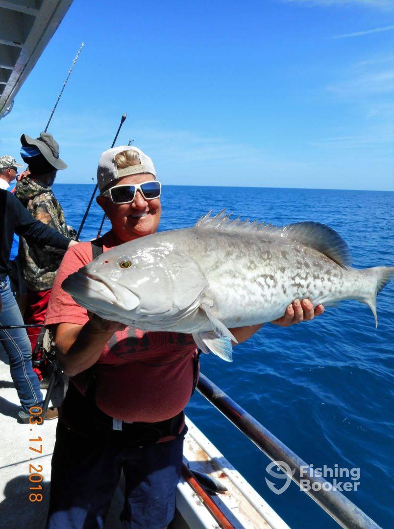Sea spirit deep sea fishing ponce inlet fl fishingbooker for Sea spirit fishing