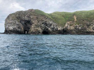 Fun Fishing Excursion
