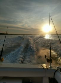 Killer 6 hr Offshore Trip